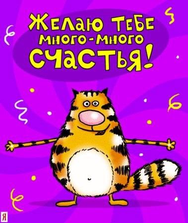 Фото поздравления с днем рождения приколы003