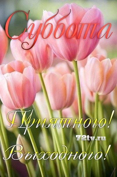 Хорошего субботнего дня и отличного настроения015