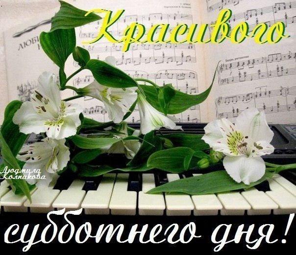 Хорошего субботнего дня и отличного настроения016