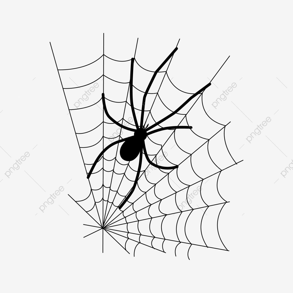 Хэллоуин пауки красивые картинки (19)