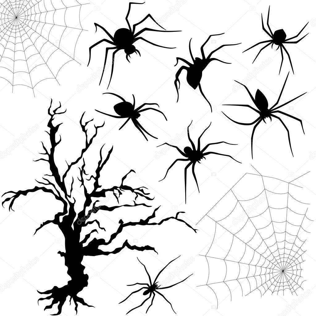 Хэллоуин пауки красивые картинки (22)