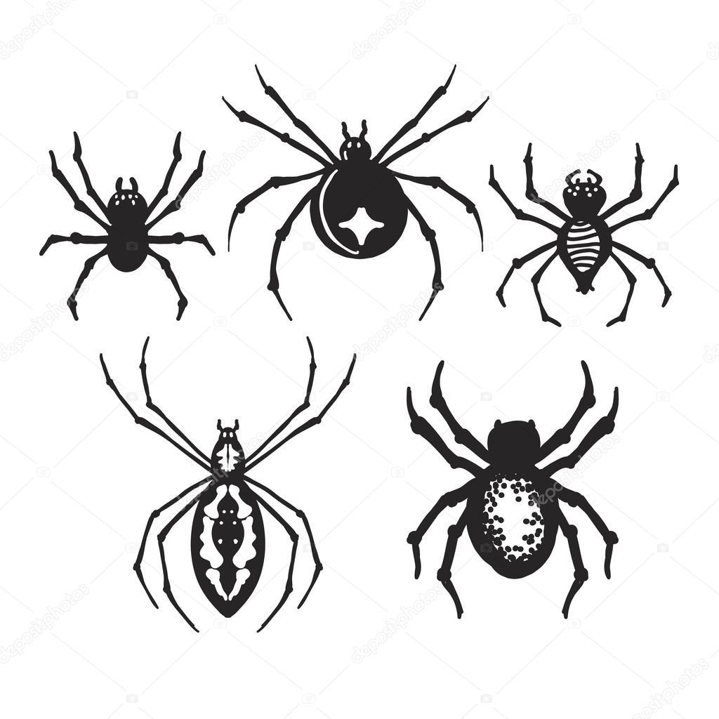 Хэллоуин пауки красивые картинки (24)