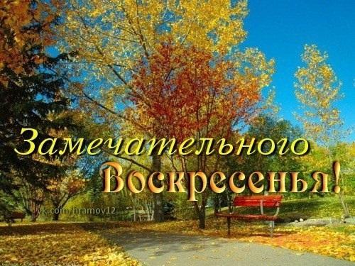 Видео открытку с добрым утром воскресенья с осенью
