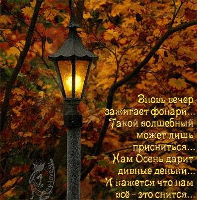 Чудесного осеннего воскресенья картинки009