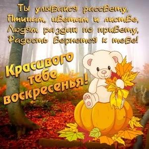 Чудесного осеннего воскресенья картинки017