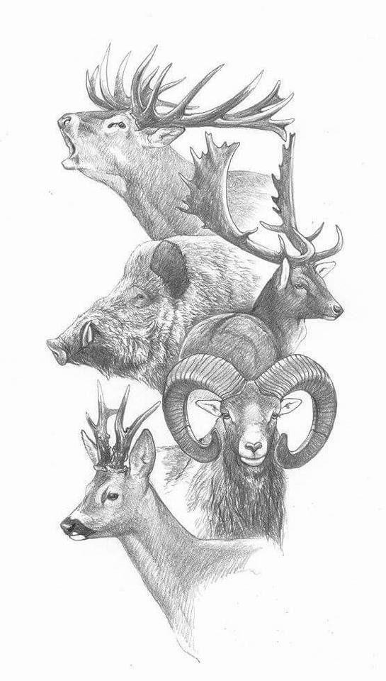 Эскизы на тему охота - сборка изображений (1)