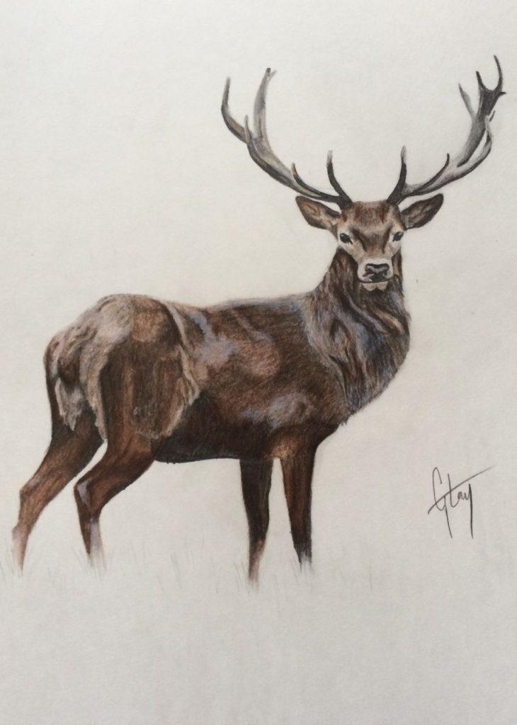 Эскизы на тему охота - сборка изображений (24)