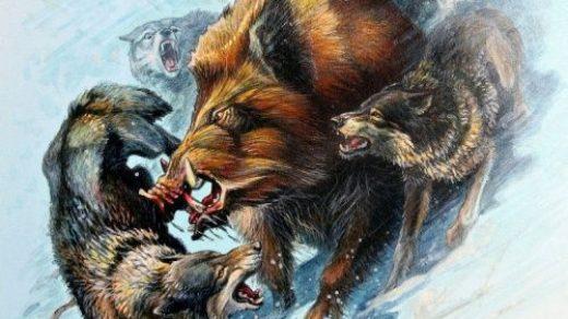 Эскизы на тему охота   сборка изображений (4)
