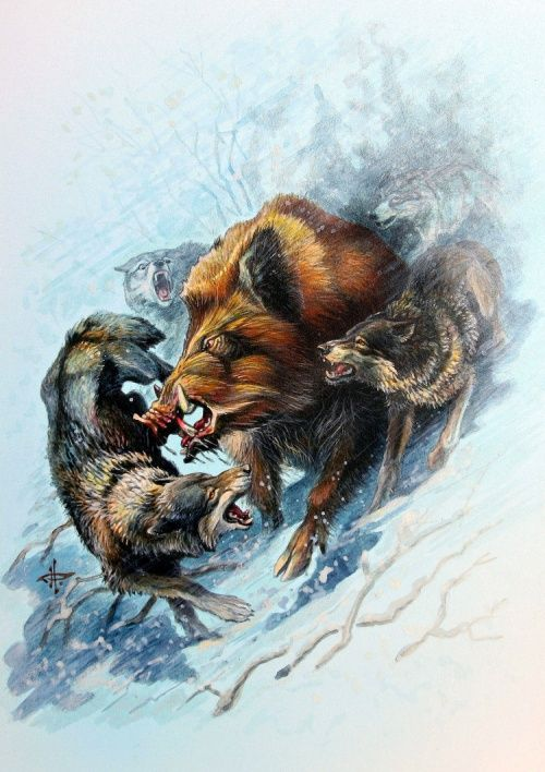 Эскизы на тему охота - сборка изображений (4)