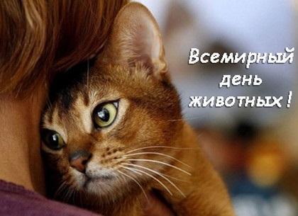 4 октября Всемирный день животных001