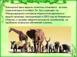 4 октября Всемирный день животных005