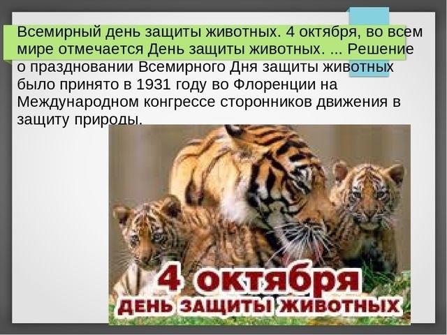 4 октября Всемирный день животных008