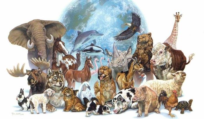 4 октября Всемирный день животных010