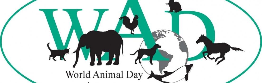 4 октября всемирный день защиты животных картинки003