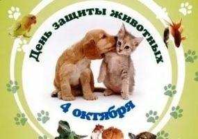 4 октября всемирный день защиты животных картинки006