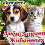 4 октября день защиты животных картинки