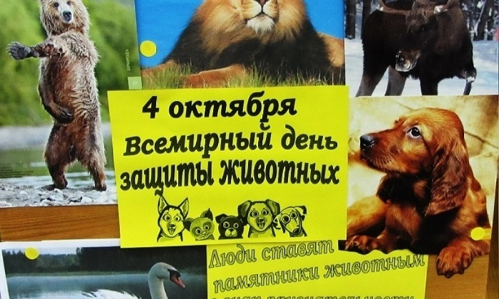 4 октября день защиты животных картинки011
