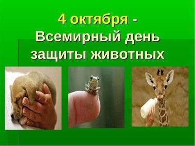 4 октября день защиты животных картинки013