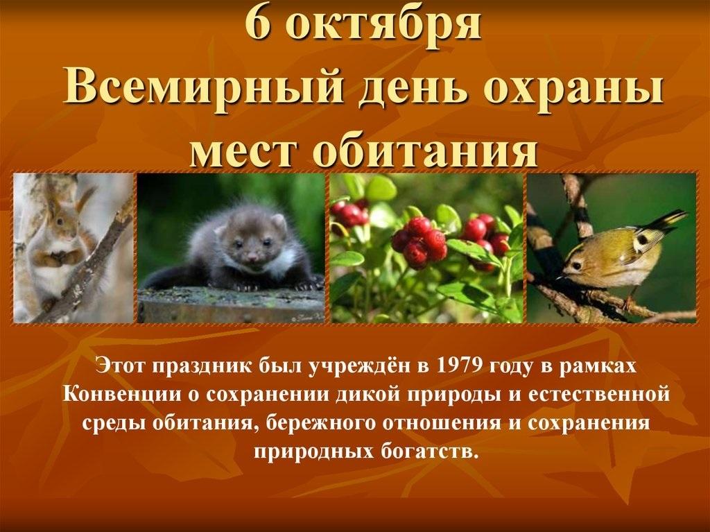 6 октября Всемирный день охраны мест обитаний017