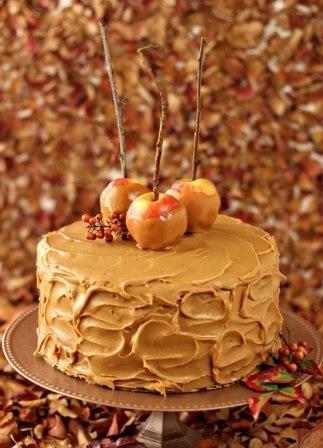 Вкусные фото тортов на день учителя018