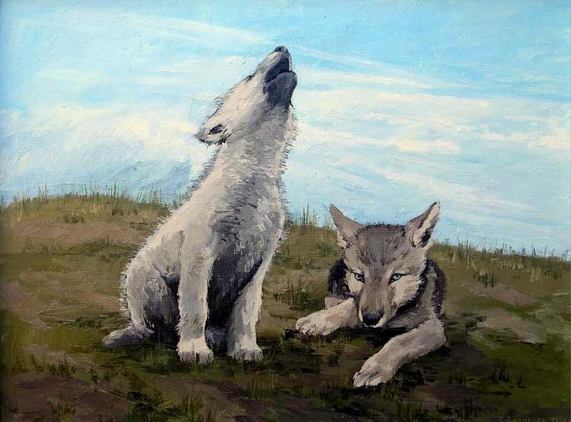 Волчата арт картинки009