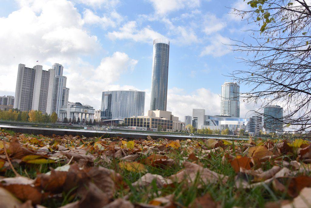 Всемирный день городов фото и картинки (12)