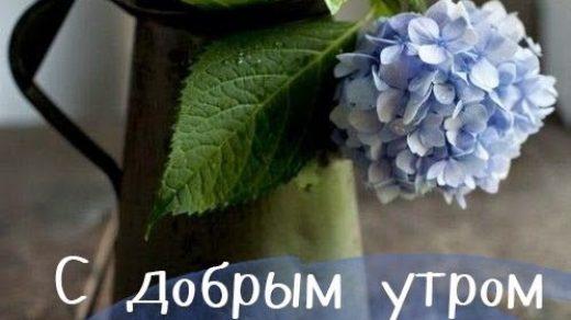 Доброе утро вторник   красивые картинки010