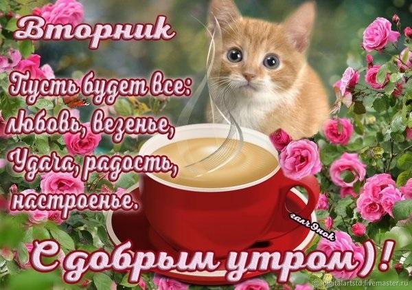 Картинки доброе утро и хорошего настроения вторник018