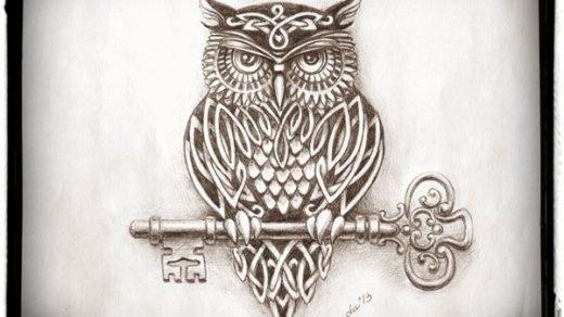 Картинки и рисунки карандашом сова002