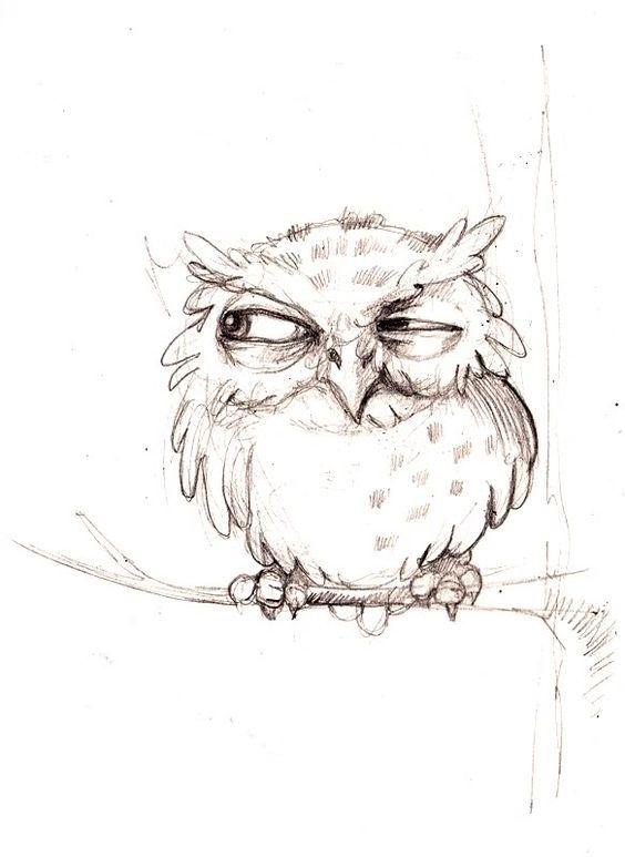 Картинки и рисунки карандашом сова003