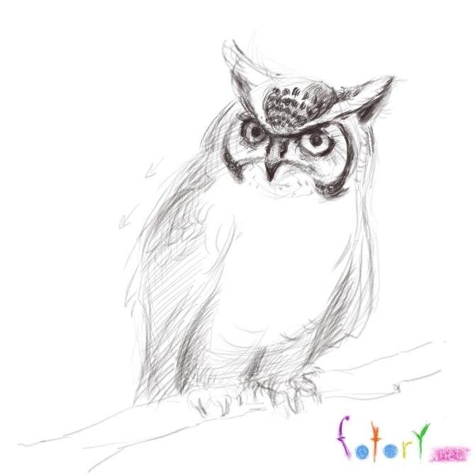 Картинки и рисунки карандашом сова007