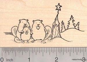 Картинки и фото на День европейского бобра (Eurasian Beaver Day)016