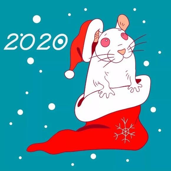 Картинки крыски на Новый год 2020010