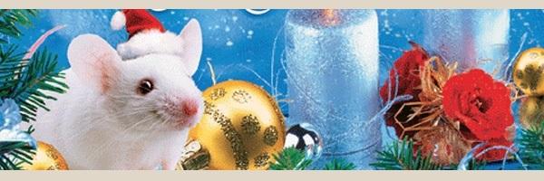 Картинки крыски на Новый год 2020011