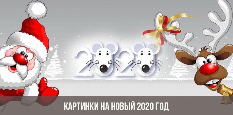Картинки крыски на Новый год 2020012