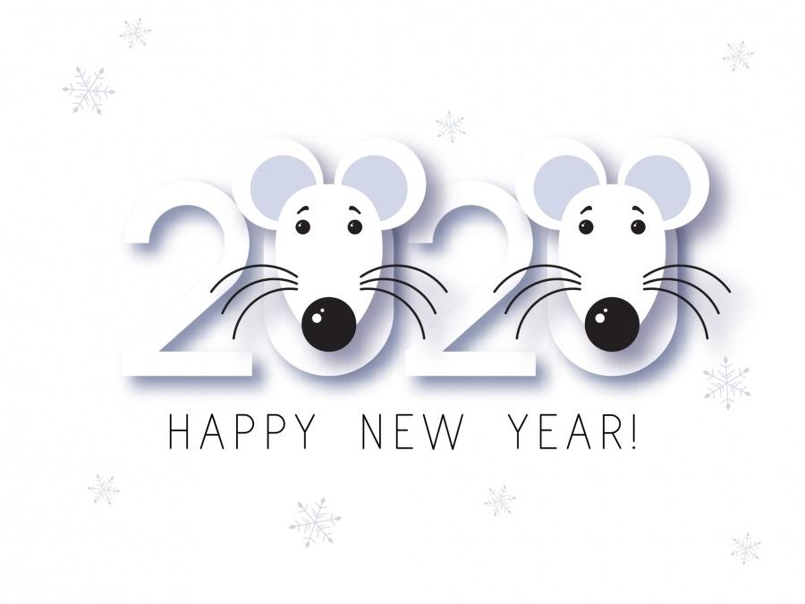 Картинки крыски на Новый год 2020014