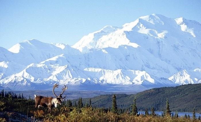 Картинки на День Аляски018