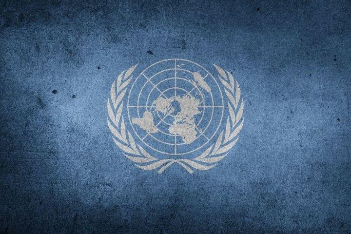 Картинки на День Организации Объединенных Наций013