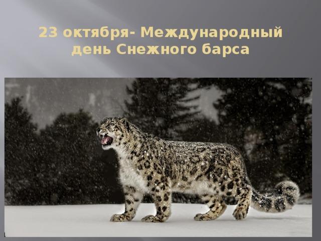 Картинки на Международный день снежного барса (13)