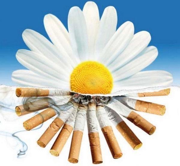 Картинки на день борьбы с курением009