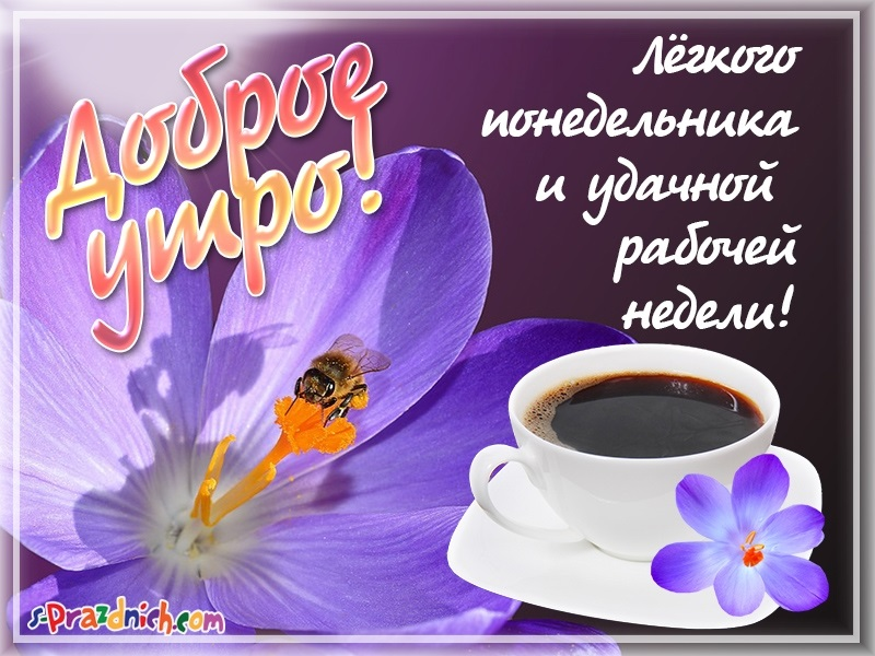 Картинки с добрым утром понедельник006