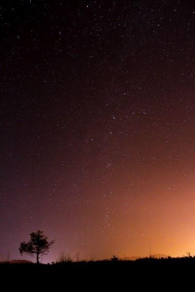 Картинки тумблер ночное небо003