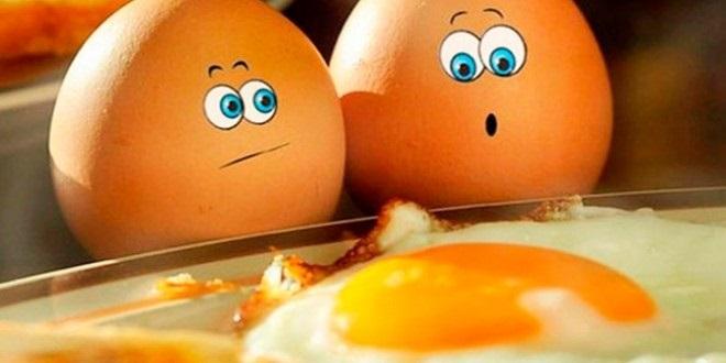 Красивые картинки Всемирный день яйца008