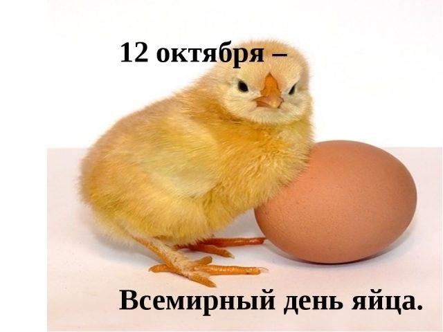 Красивые картинки Всемирный день яйца010