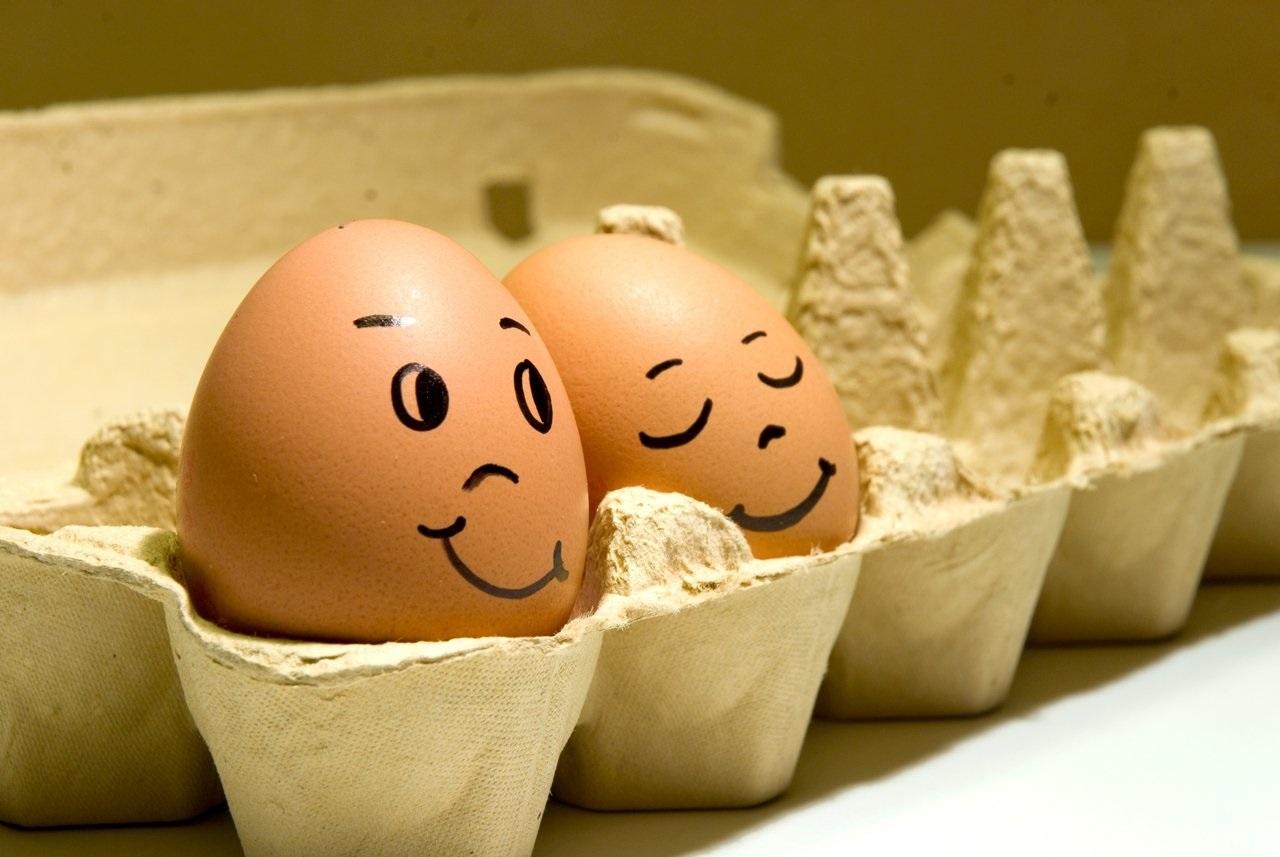 Красивые картинки Всемирный день яйца019