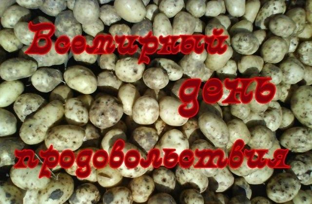 Красивые картинки на Всемирный день продовольствия011