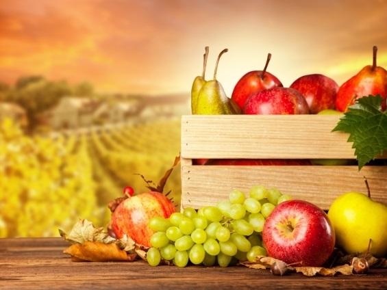 Красивые картинки на Всемирный день продовольствия017
