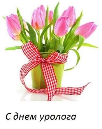 Красивые картинки на День уролога014