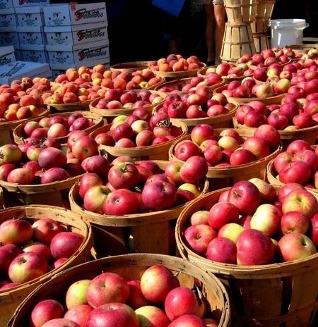 Красивые картинки на День яблока в Англии002