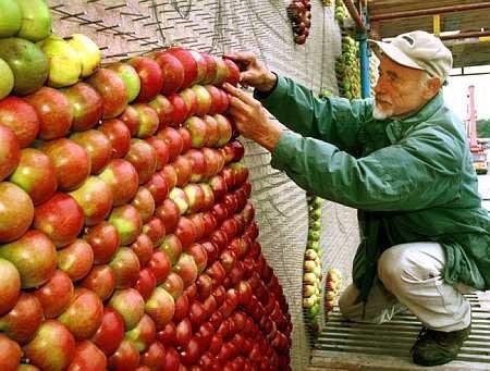 Красивые картинки на День яблока в Англии008